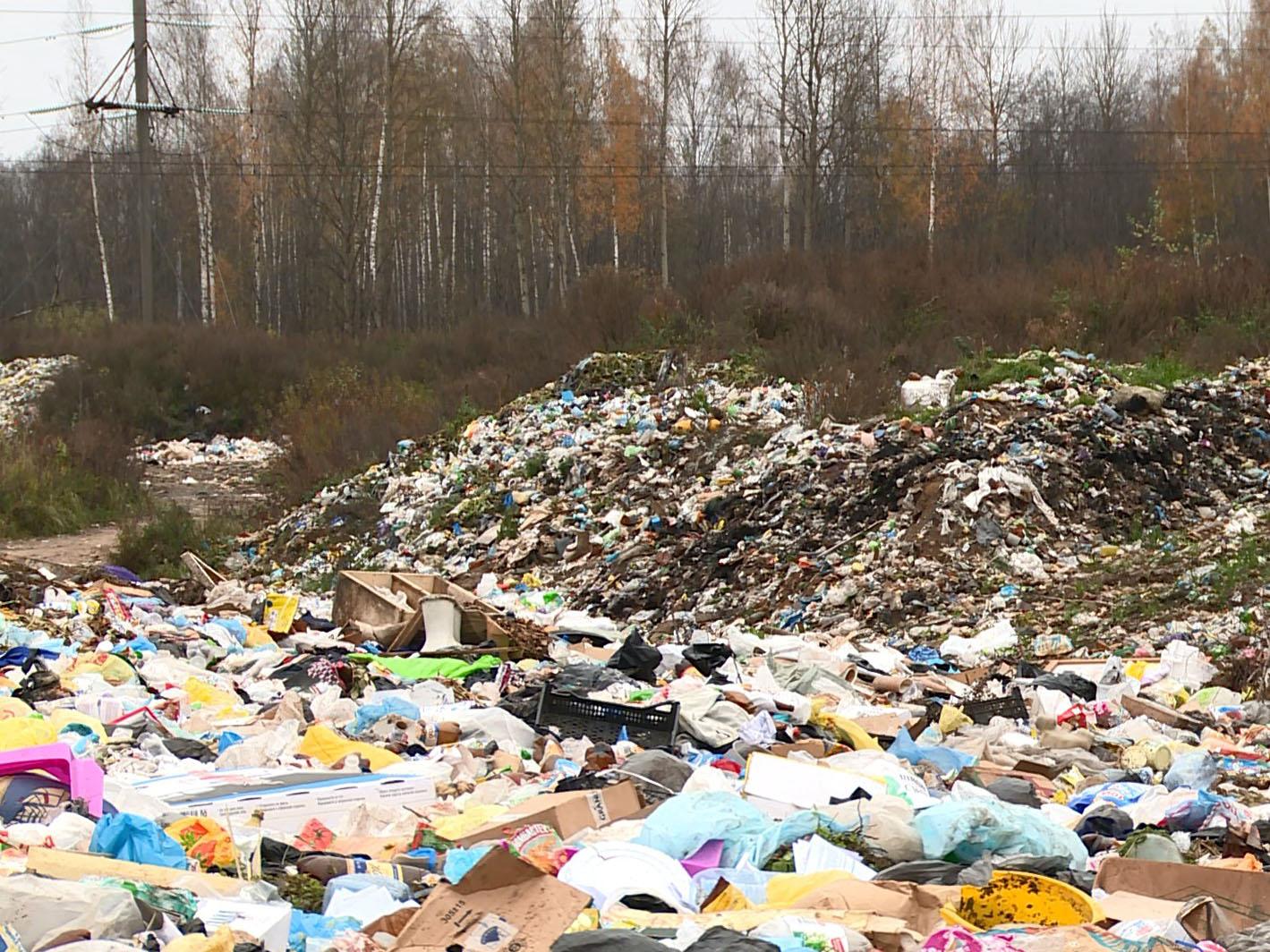 Вобласти будет реализован новый проект попереработке мусора