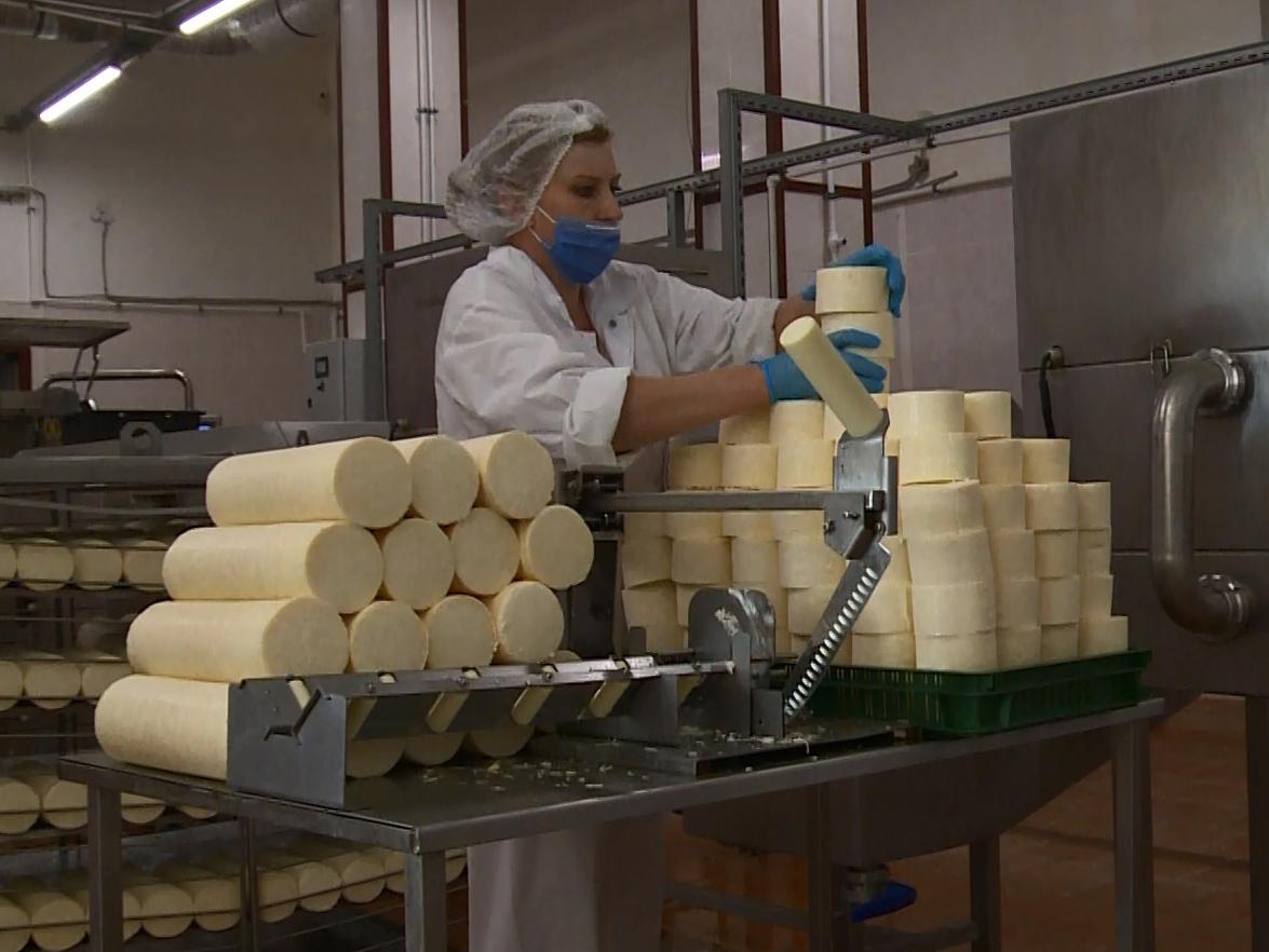 ворота уникальный красносельский сырный завод фото сейчас складывается жизнь